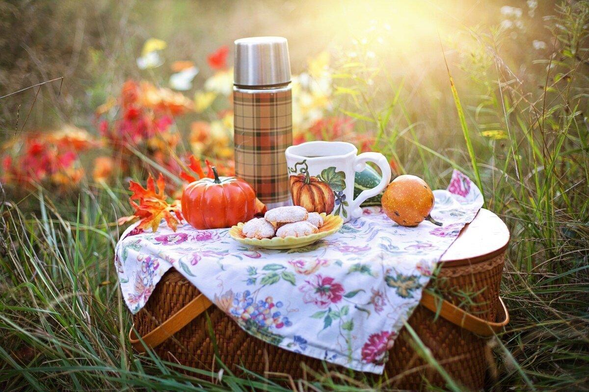 Co zabrać na piknik? 13 niezbędnych gadżetów