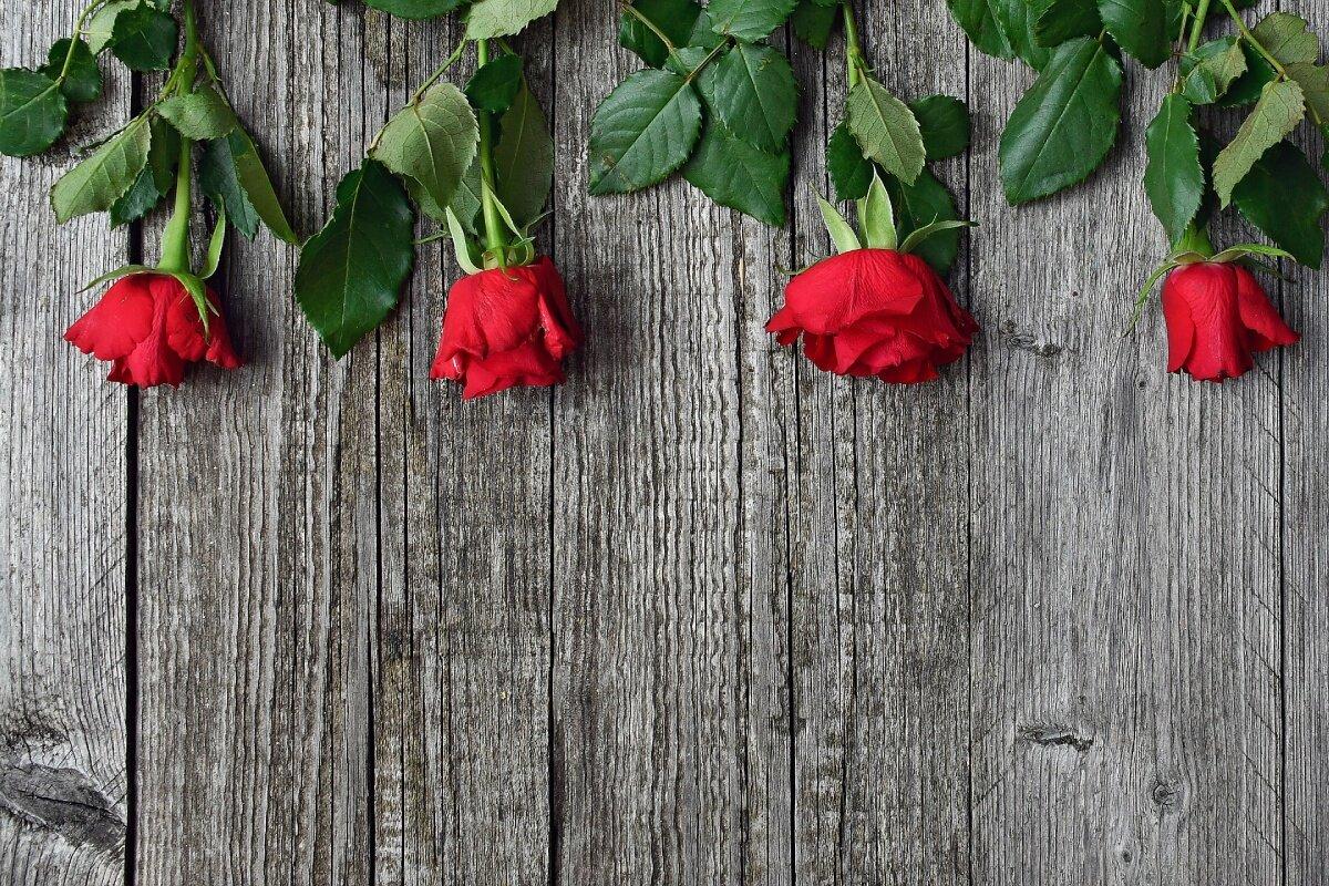 Soczyste czerwone jabłko randki online